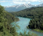 Kenai River Real Estate